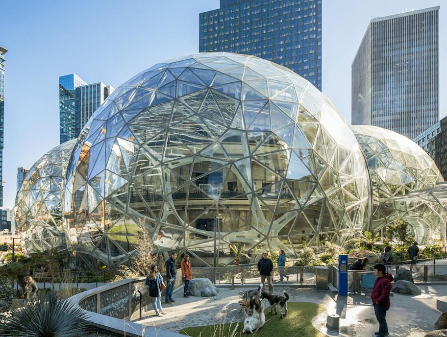 Amazon Spheres.