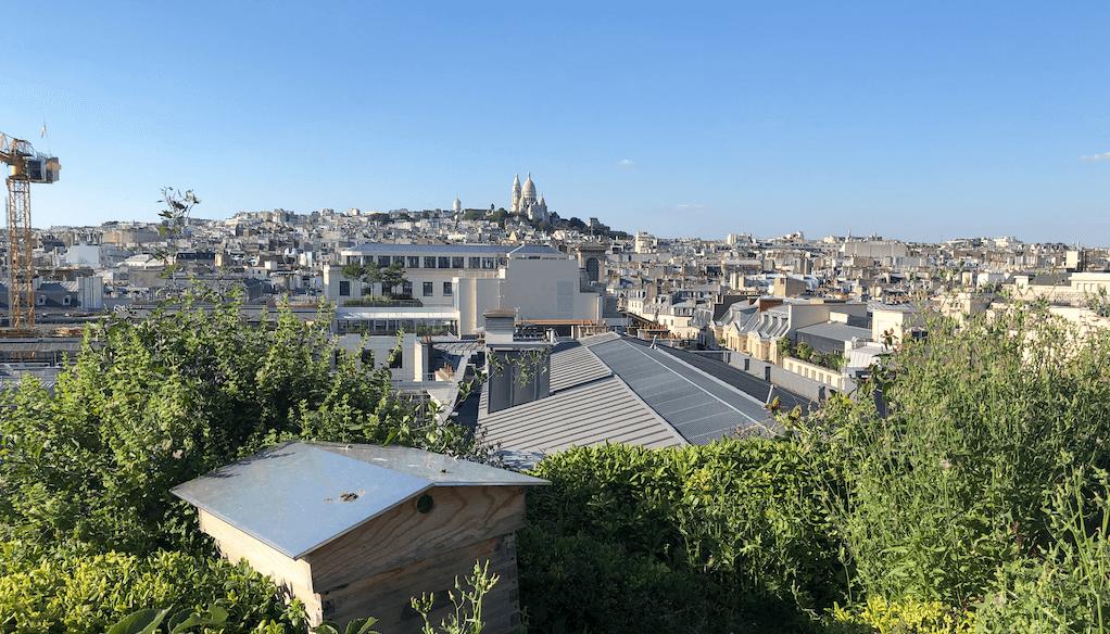 Frankrig åbner for konferencer og messer -...